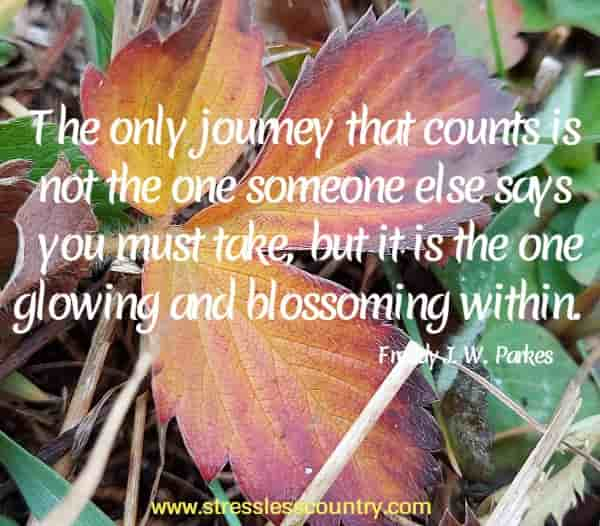 The only journey that counts is not the one someone else says you must take, but it is the one glowing and blossoming within.