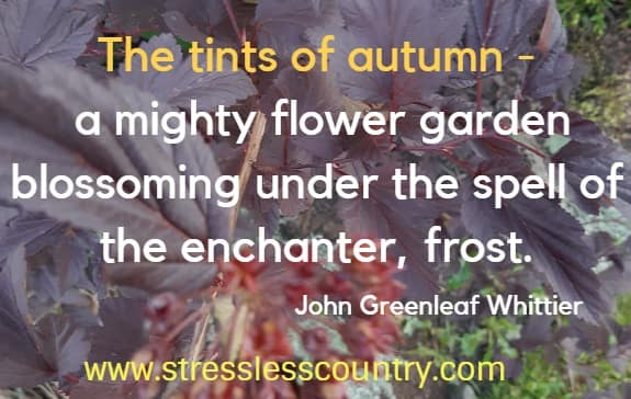 autumn poems to inspire
