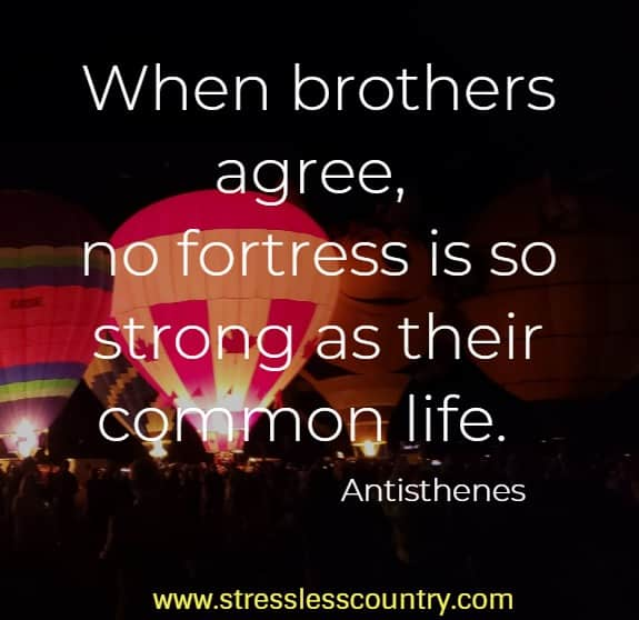 brother quotes to strengthen the relationship