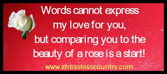 Words cannot express my love for you, but comparing you to the beauty of a rose is a start!