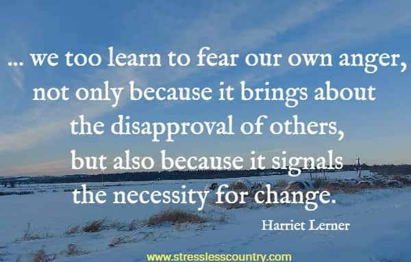 ... we too learn to fear our own anger, not only because it brings about the disapproval of others, but also because it signals the necessity for change.