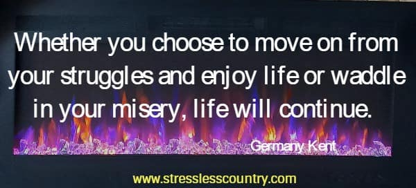 Whether you choose to move on from your struggles and enjoy life or waddle in your misery, life will continue.