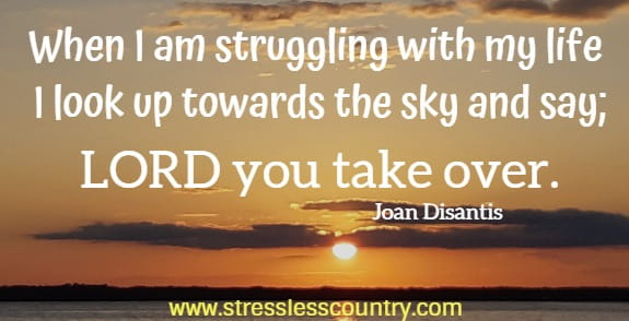 When I am struggling with my life I look up towards the sky and say; LORD you take over.  Joan Disantis