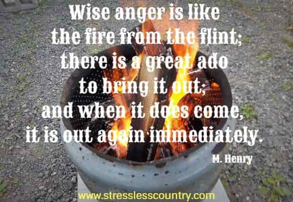 Wise anger is like the fire from the flint; there is a great ado to bring it out; and when it does come, it is out again immediately.