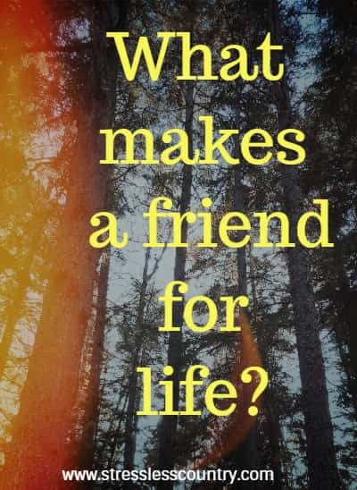 BFF poems about friends for life