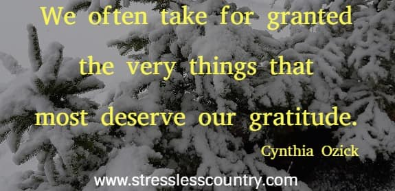 appreciation and gratitude quotes