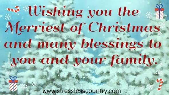 Wishing you the Merriest of Christmas and many blessings to you and your family.