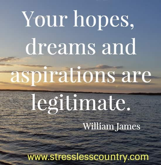 Your hopes, dreams and aspirations are legitimate.   William James