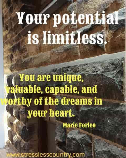 Your potential is limitless. You are unique, valuable, capable, and worthy of the dreams in your heart.