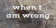 when I am wrong