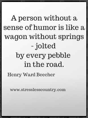 A person without a sense of humor is like a wagon without springs - jolted  by every pebble in the road. Henry Ward Beecher