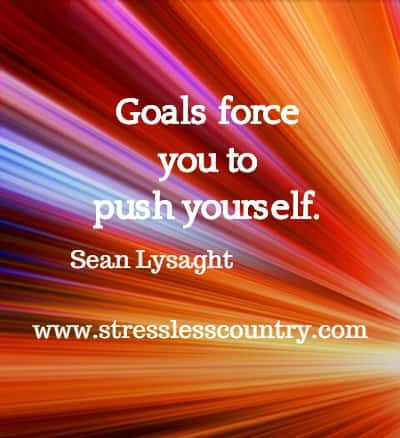 Goals force you to push yourself. Sean Lysaght