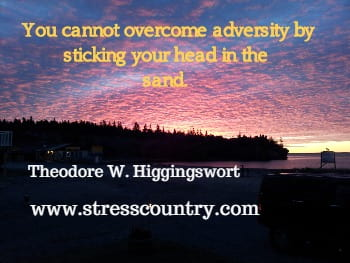 You cannot overcome adversity by sticking your head in the  sand. Theodore W. Higgingsworth
